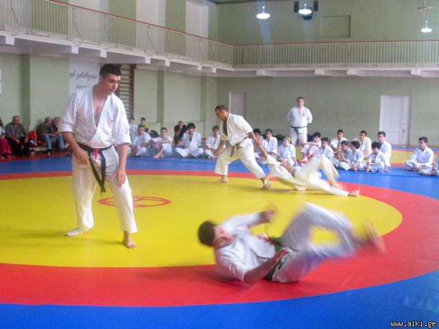 The 8th Georgian Aikido Championships and Festival